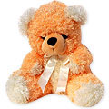 Send Gifts to India : Gifts to India : Teddy Bears to India